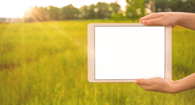 タブレット画面のモックアップ、日当たりの良いフィールドの背景、コピースペースの写真と手