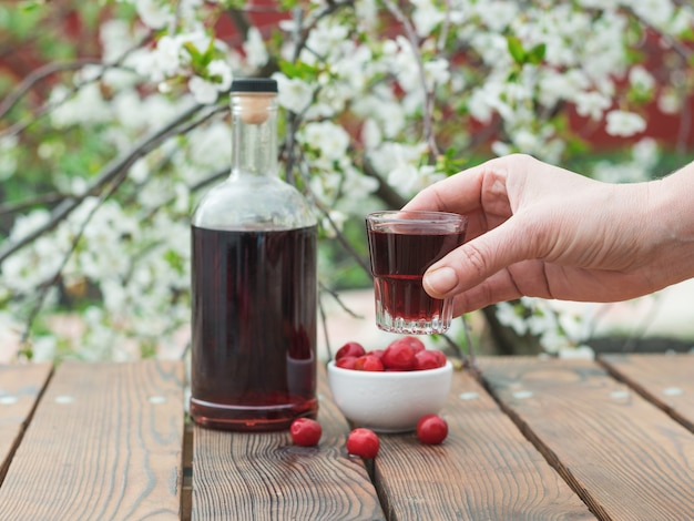 The hand of a woman with a glass of liqueur of a flowering tree. homemade alcohol made from cherry berries.