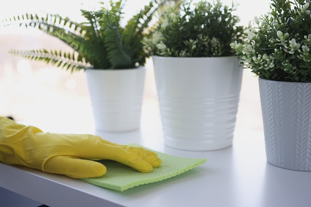 Hand in yellow glove wipes truth with rag on windowsill