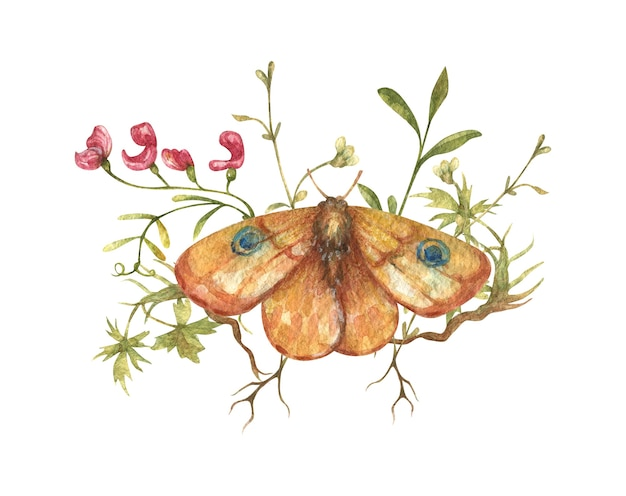 Handdrawn watercolor butterfly moth with wildflowers