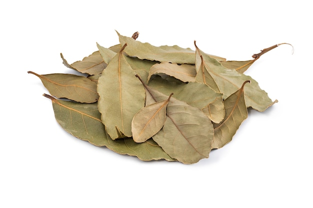 A handful of dried laurel leaves photographed close-up on a white background