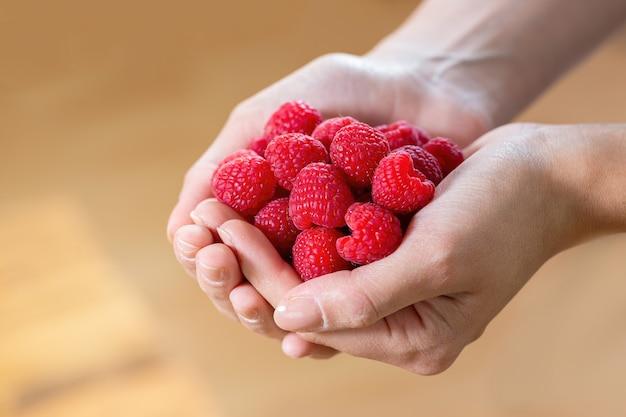一握りの赤い熟したラズベリーベリー