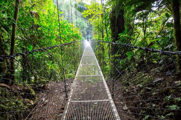 Вручение моста в зеленых джунглях, коста-рика, центральная америка