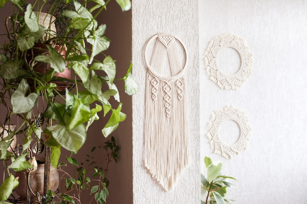 Handmade cotton macrame dream catcher on white wall background. traditional amulet for protecting sleep.  macrame lace on the wall with green leaves