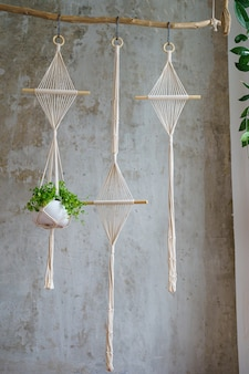 Handmade cotton macrame plant hanger hanging from wood branch over grey wall at home
