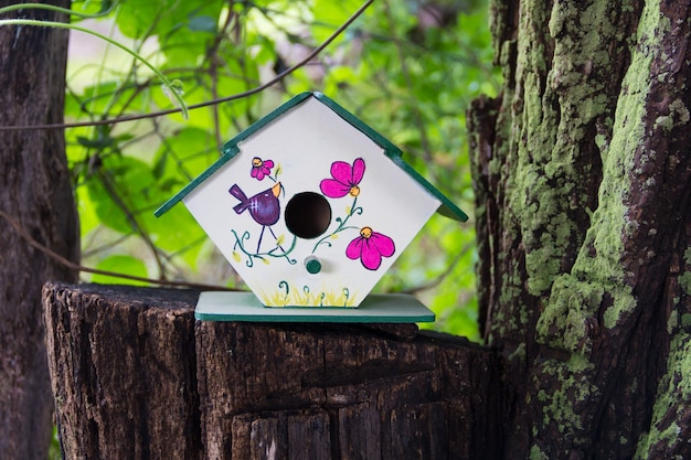 Handmade houses for birds hand painted on the tree trunk in spring
