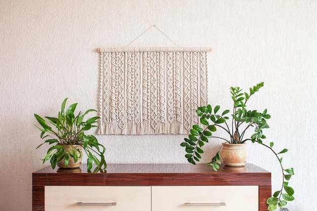 Handmade macrame 100 cotton wall decoration with wooden stick hanging on a white wall   macrame braiding and cotton threads  eco friendly natural decoration concept in the interior