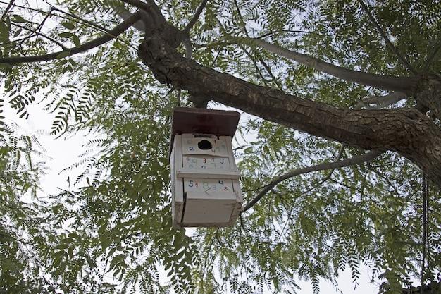 새를 위한 수제 둥지 집