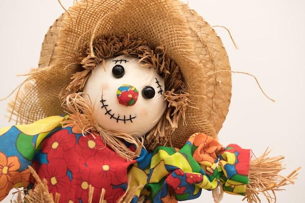 Handmade scarecrow.