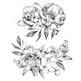 Handpainted grapic flowers drawing. flower bouquet black and white illustration.