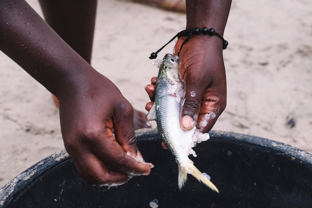 Hands of an african woman peeling fish in a cauldron on the street