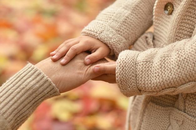 落ちた黄色の葉のクローズアップに対する手