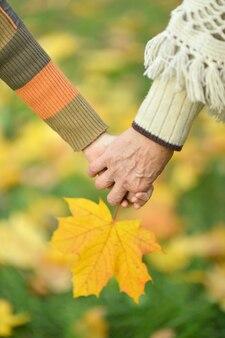 落ちた黄色の葉に対する手