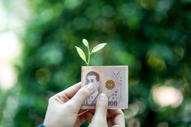 金融ビジネスマンの手とお金