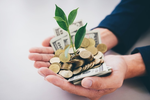 Hands of businessman holding with plant sprouting growing from a handful of golden coins