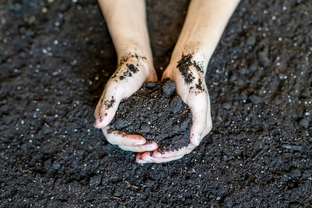 Hands cup holding soil earth over the organic ground