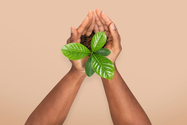 Hands cupping plant save the environment campaign