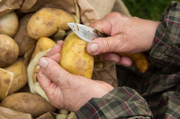 Hands of an elderly man prepare potatoes