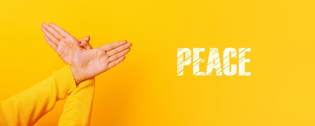 Hands gesture bird over yellow background , panoramic image with inscription peace