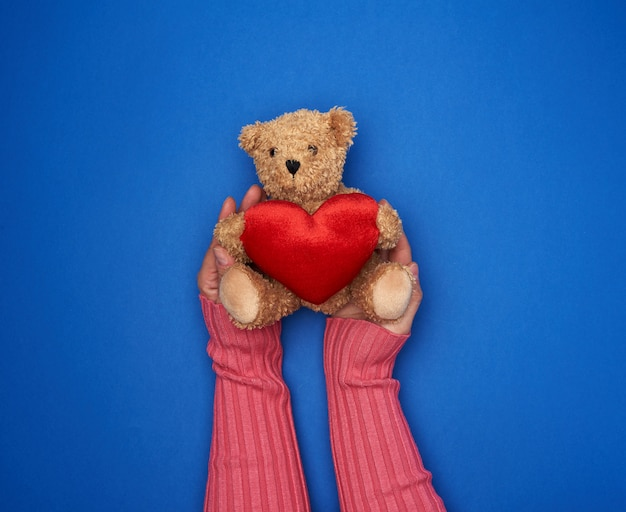 Hands hold a small toy teddy bear
