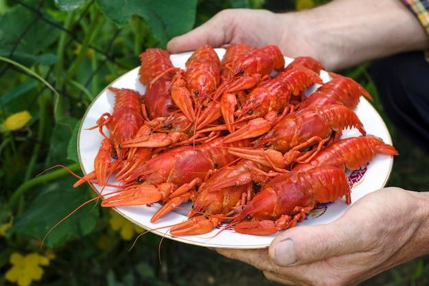 Руки держат тарелку, полную красных раков.