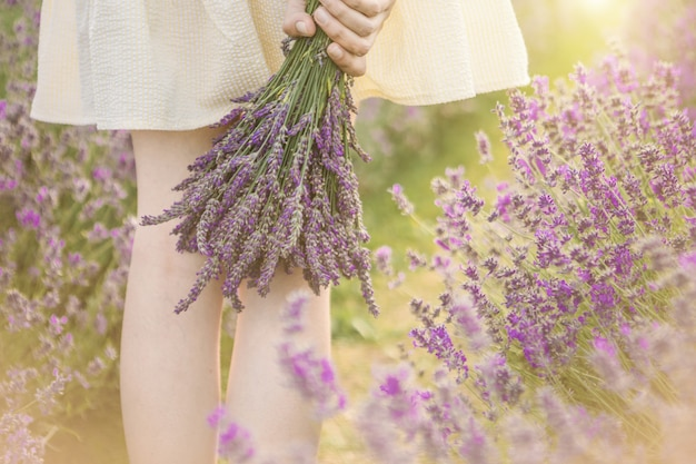 Hands holding bouquet of lavender flowers