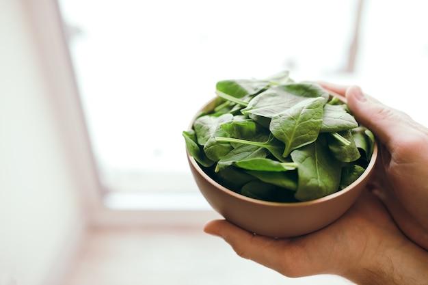 Руки держат миску со свежим зеленым салатом, листьями шпината