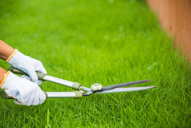 Hands holding the gardening scissors on green grass. gardening concept background