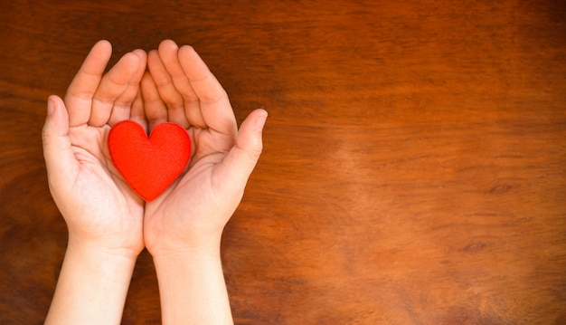 Hands holding heart give love philanthropy donate help warmth take care valentines day health care love organ donation family insurance world health day