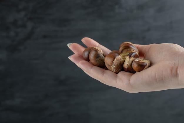 Mani che tengono molte delle castagne sane su uno sfondo bianco.