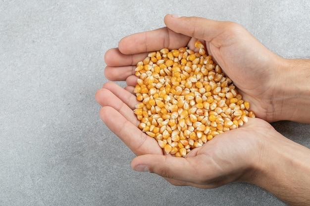 Руки, держащие много сырых кукурузных зерен на серой поверхности.