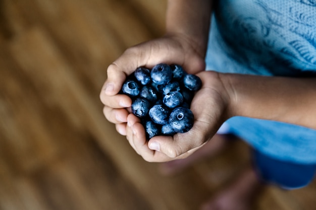 Hands holding organic fresh blueberries, summer harvest and healthy eating