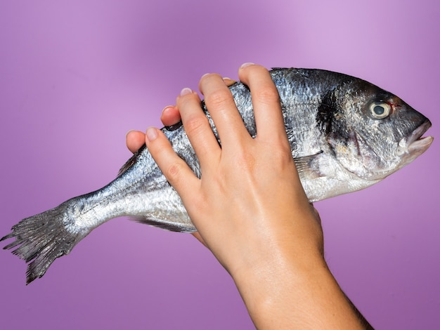 Hands holding raw fish with gills