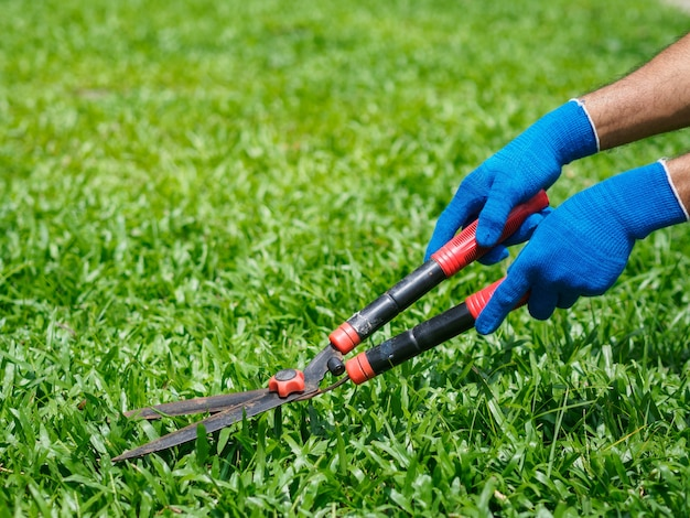 手は緑の草の上に園芸はさみを保持しています。ガーデニングのコンセプト背景。