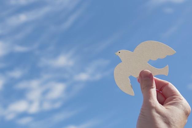 푸른 구름 하늘 배경, 세계 평화의 날 개념에 흰 비둘기 새를 손에 들고