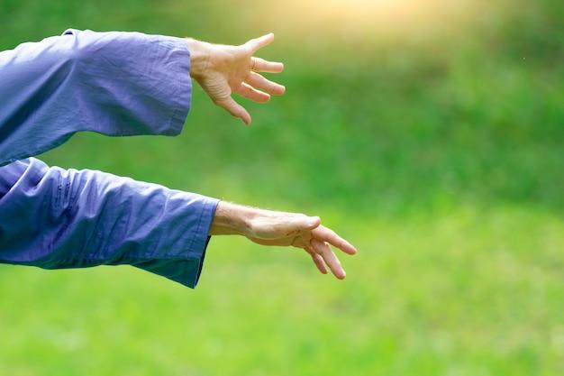 Руки в китайском боевом искусстве тайцзи-цюань