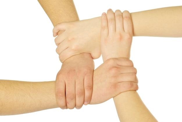 흰색 배경에 고립 된 손