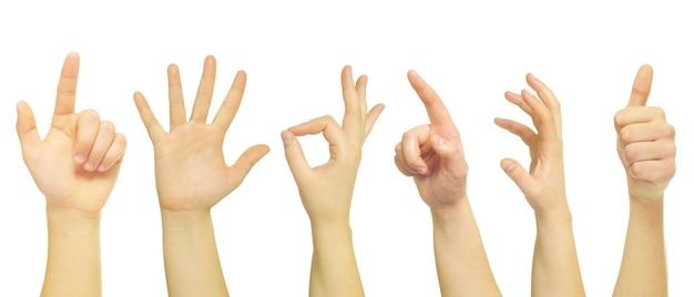 흰색 절연 손