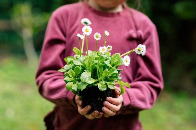 The hands of a little girl holding a plant ready to be transplanted into a pot.