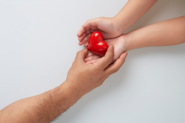 Hands of man and child with a red heart on white wall