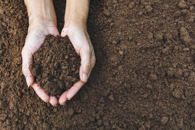 Hands of man holding soil