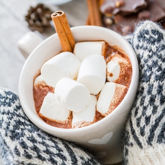 Hands in mittens holding hot chocolate