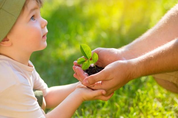남자의 손에서 식물을 빼앗는 아이의 손
