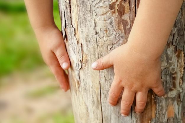 자연 속에서 행복 한 아이의 손