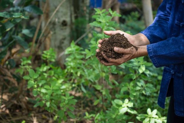 비옥 한 토양에서 자라는 나무를 키우고 재배하는 농부의 손