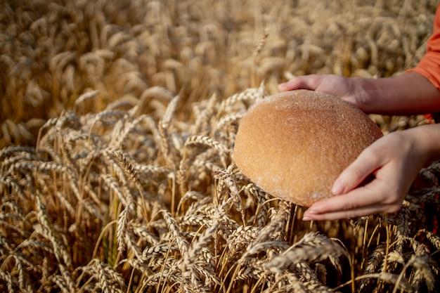 黄金の小麦の穂で焼きたてのふすまパンを保持している農家の手