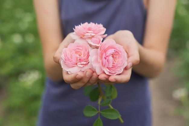 ピンクのバラの花を保持している女の子の手