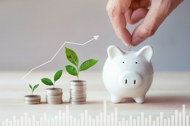 Hands put coin into piggy bank for saving money wealth
