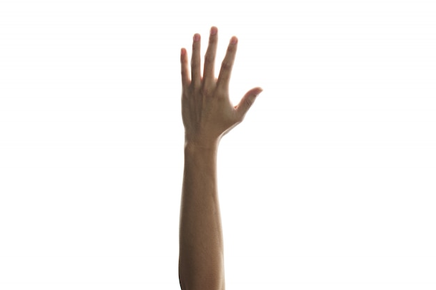 Hands raised in the air mean support surrender or voting