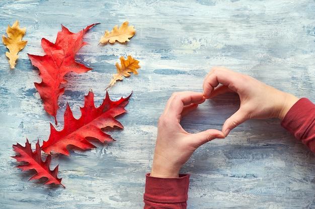 Руки показывают знак сердца. натуральные осенние украшения, яркие красные, желтые дубовые листья. квартира лежала на светлой фактурной древесине.